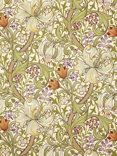 Shop - Golden Lily | Annandale Wallpapers