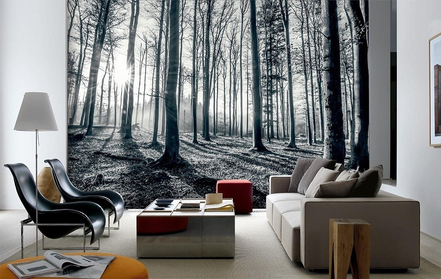 Shop black white forest mural xl annandale wallpapers for Black and white forest wall mural